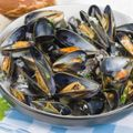 Moules Mariniere Recipe and Wine Pairing
